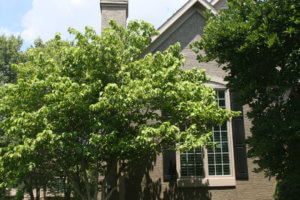 Residential Painting - Overland Park